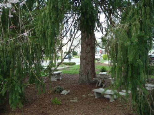 treegarden3