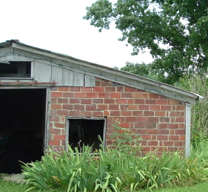 turtle run shed